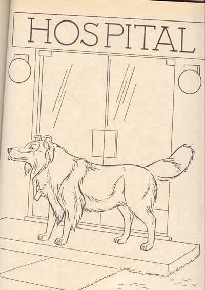 Lassie Colouring Book