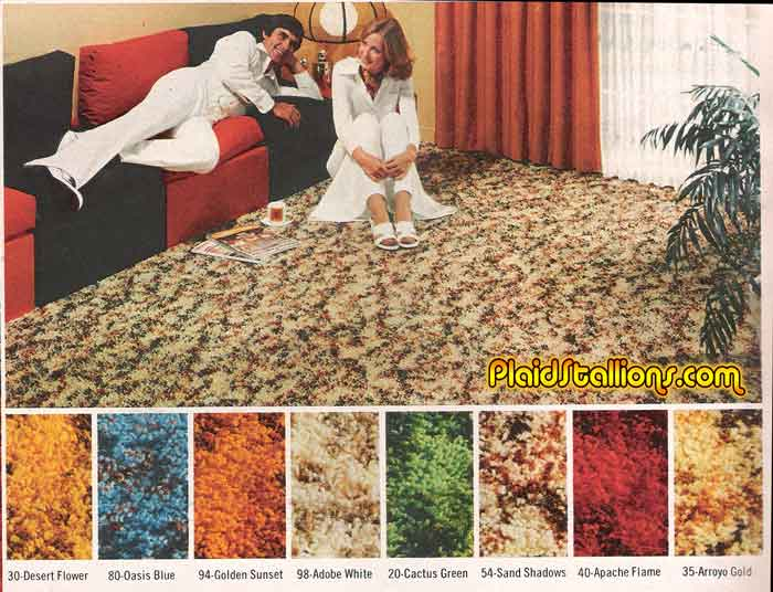 Again Let Me Explain. When I Was In Junior High We Got New Wall To Wall  Carpeting. It Was Called Shag Carpeting. You Know It Was Kind Of Like  Hippie Carpet.